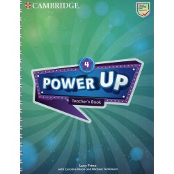 Power Up Level 4 Teacher's Book