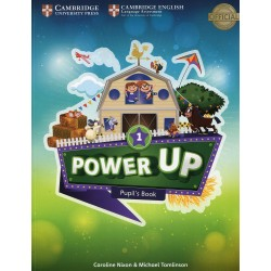 Power Up Level 1 Pupil's Book