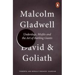 David and Goliath, Malcolm Gladwell