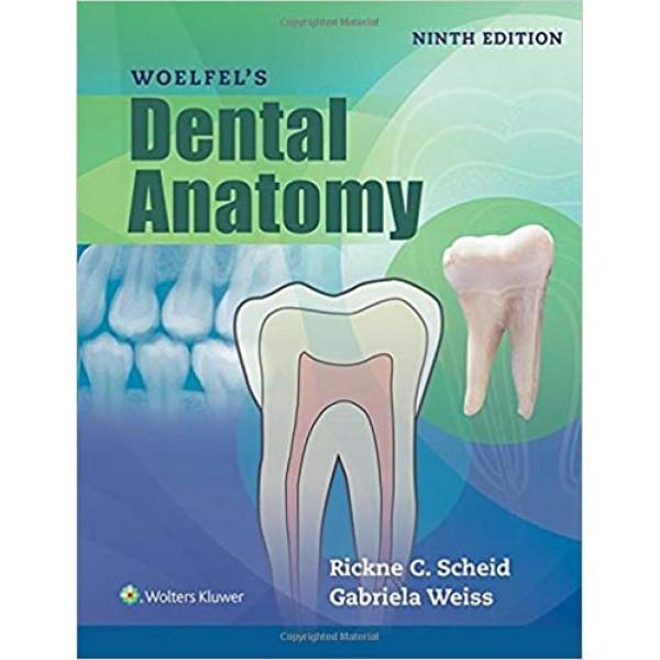 Woelfels Dental Anatomy 9th Edition, Scheid